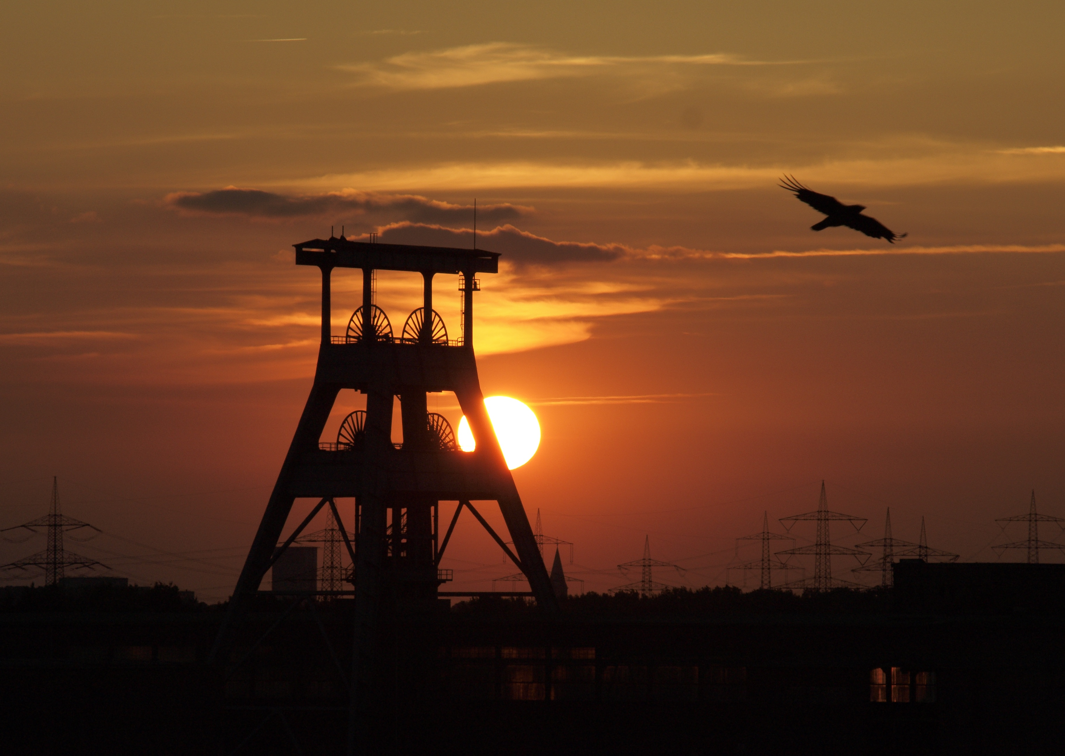 Labour Movements In The Mining Sector